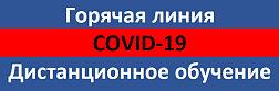 Горячая линия: COVID-19. Дистанционное обучение